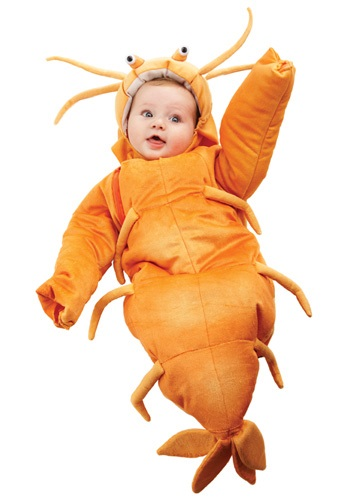 Infant Orange Shrimp Bunting
