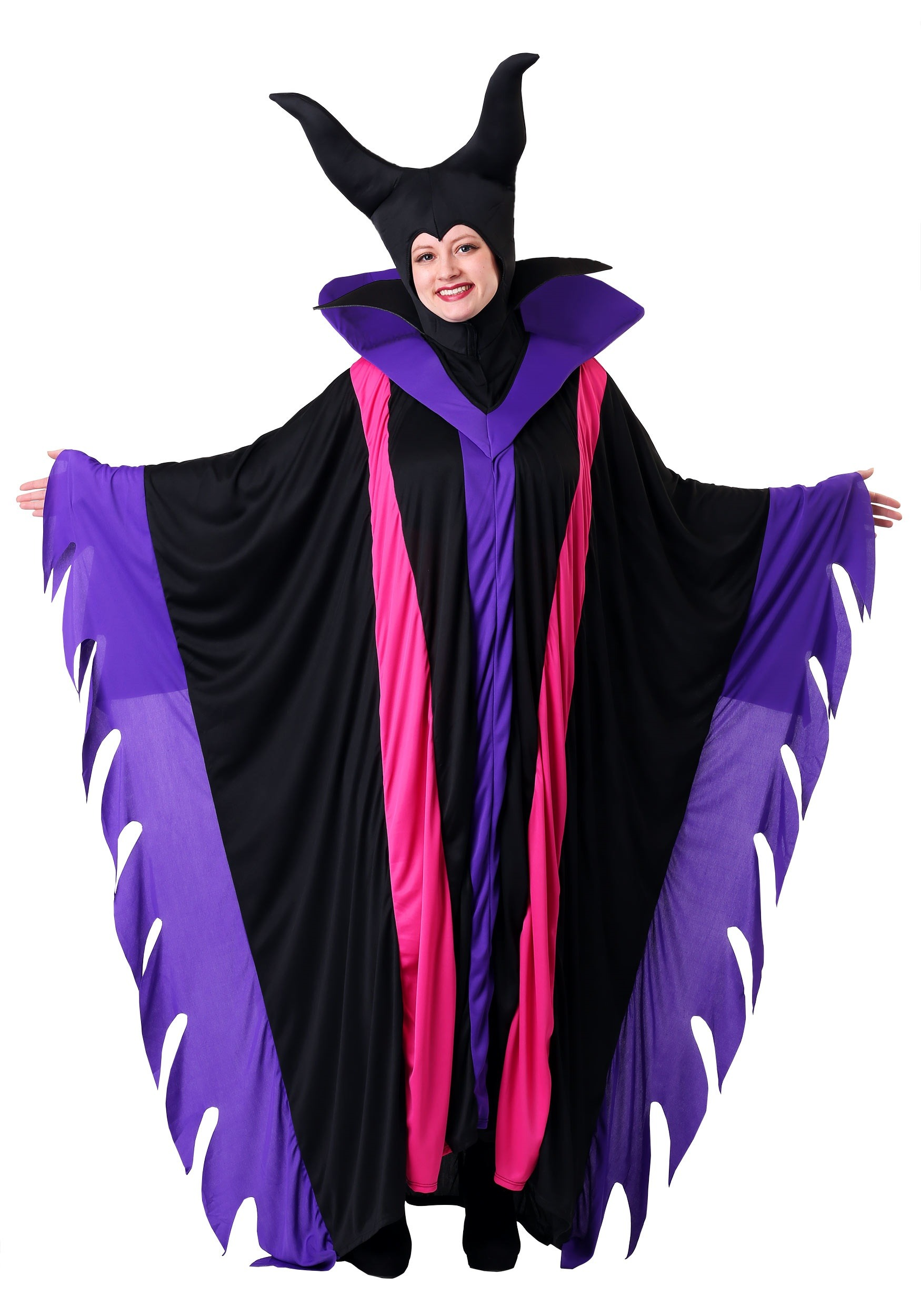 Womens Plus Size Fairytale Witch Costume