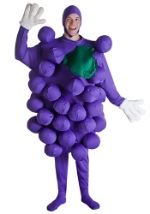 Purple Grapes Bunch Costume