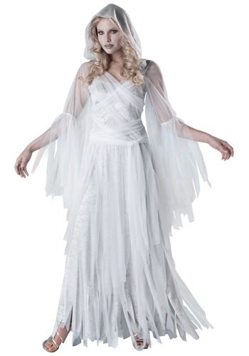 Haunting Ghostly Beauty Costume