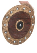 Viking Warrior Shield