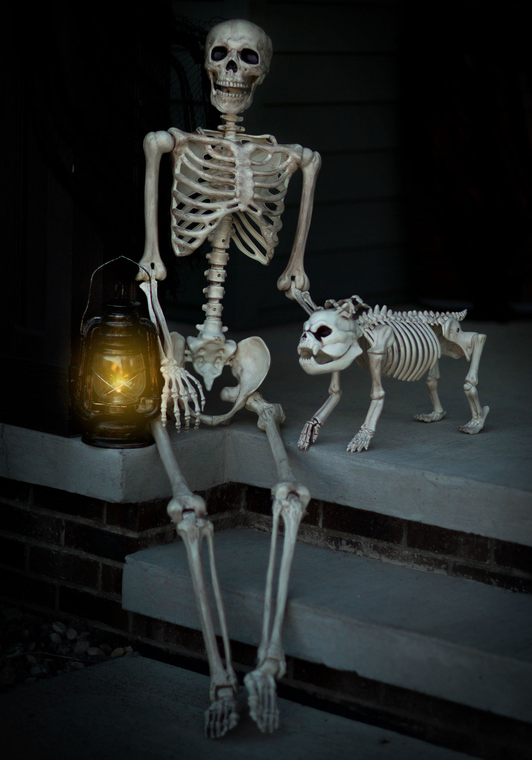 Life-Size Poseable Human Skeleton - Skeleton Halloween Decorations