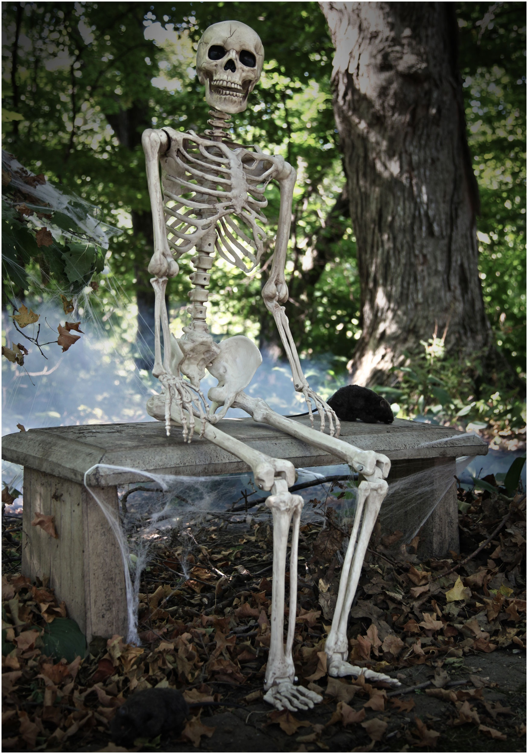 Garage Decorating Ideas Life Size Poseable Human Skeleton Skeleton Halloween