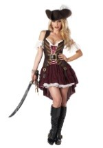 Ladies Plus Size Sexy Swashbuckler Costume