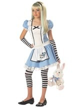 Tween Wonderland Alice Costume