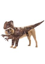 Raptor Rex Dog Costume