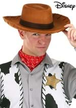 Adult Woody Cowboy Hat