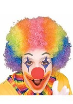 Clown's Rainbow Wig