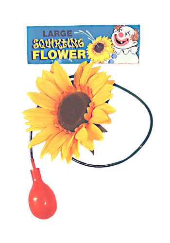 Giant Squirting Flower