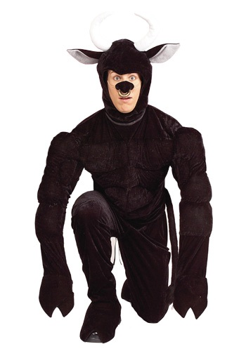 Toro the Terri-Bull Adult Costume
