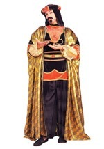 Mystical Sultan Costume