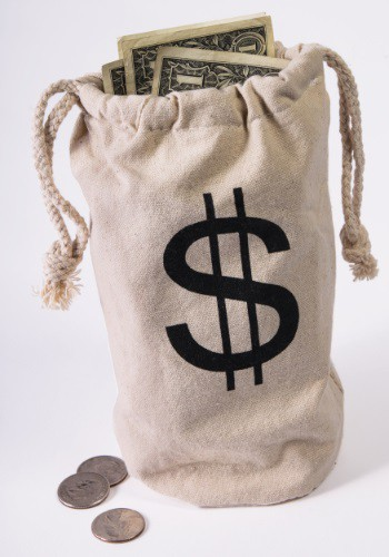 Bank Money Bag Accessory