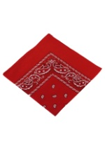 Red Neckerchief Bandana
