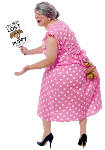 Lost Doggie Costume