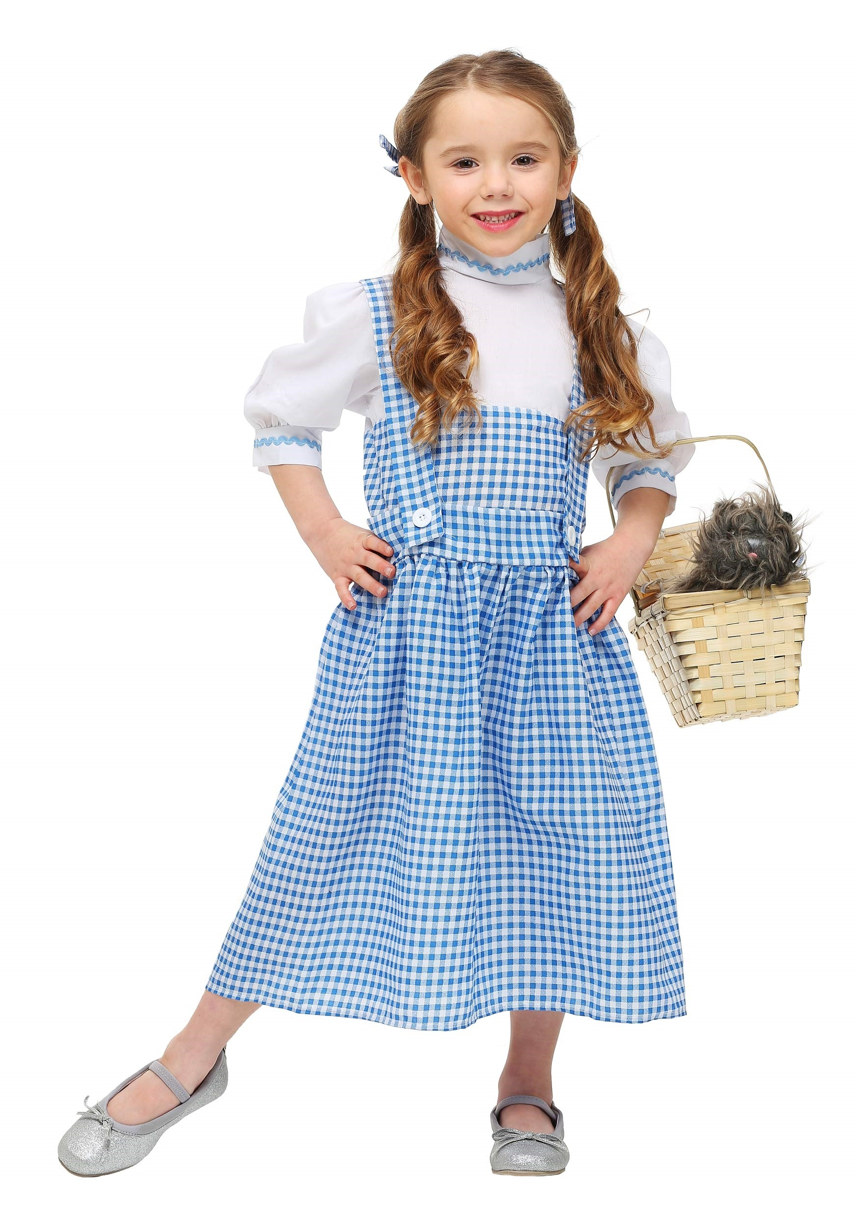 Toddler Little Dorothy Dress  sc 1 st  Halloween Costume & Toddler Little Dorothy Dress - Kids Wizard of Oz Halloween Costumes