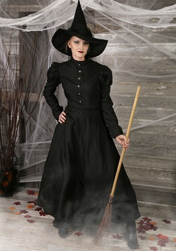 Adult Plus Size Witch Costume