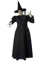 Womens Plus Witch Costume