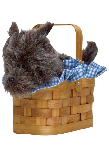 Dorothy and Toto Accessory Basket