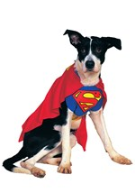 Krypto the Superdog Costume
