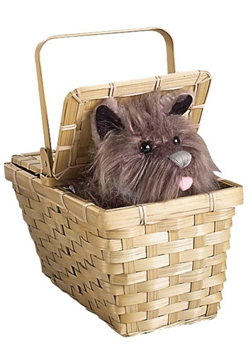 Toto Toy & Basket