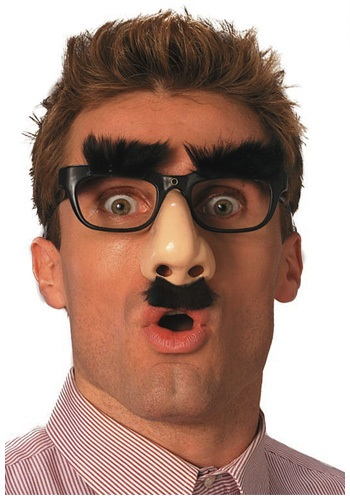 Goofy Nose Glasses